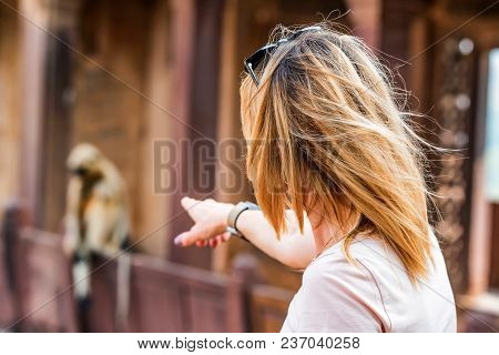 Beautiful Young Woman Points At Monkey Sitting Outside. Travel Concept In India