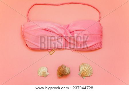 Flat Lay With Bikini And Shell On Pink Colourful Pastel Color Trendy Modern Fashion Pin-up Backgroun