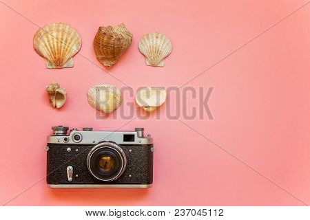 Flat Lay With Vintage Film Photo Camera And Shell On Pink Colourful Pastel Color Trendy Modern Fashi