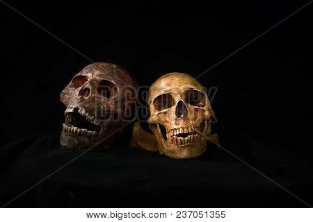Still Life Of Human Skull And Candle Light,halloween Concept, Close Up Skull  And Candle Still Life