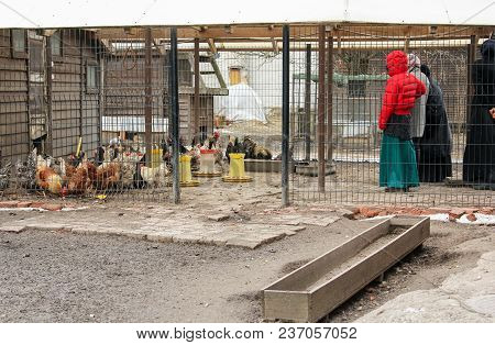 Old Ladoga, Russia - 8 April, People On The Birdy Farmstead, 8 April, 2018. The Subsidiary Farm Of T