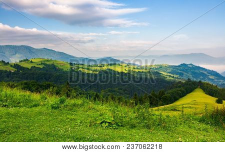 Mountainous Landscape In The Morning. Fresh Summer Scenery With Grassy Meadows On Forested Hills. Fo