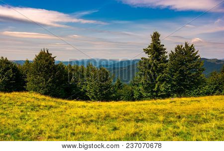 Forest On A Grassy Meadow In Mountains. Beautiful Summer Landscape With Krasna Mountain In The Far D