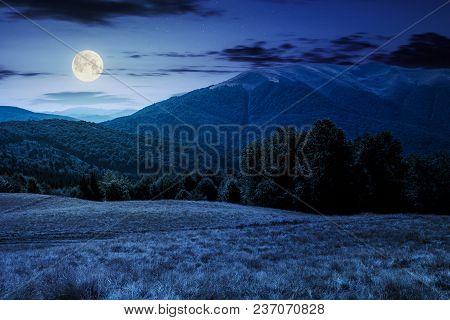 Beech Forest Near Apetska Mountain At Night In Full Moon Light. Lovely Summer Landscape Of Carpathia