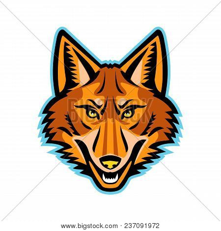 Mascot Icon Illustration Of Head Of A Coyote Or Canis Latrans, A Canine Native To North America View