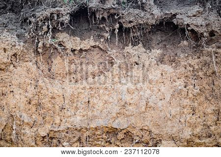 Texture Of Clay Rock In  Quarry. Clay Is A Building Material