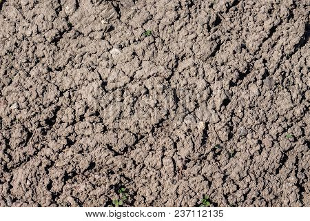 Texture From Dry  Earth. Dry Land During  Drought