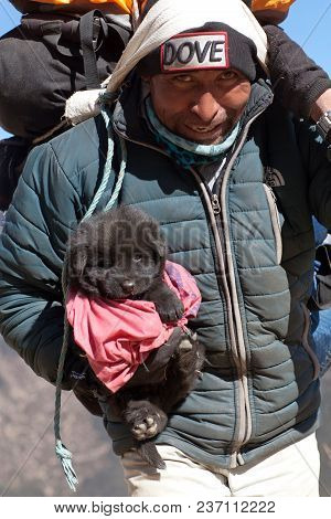 Namche Bazaar, Nepal - January 4, 2017: Nepalese Porter Carrying Backpack And Tibetan Mastiff Puppy