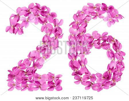 Arabic Numeral 26, Twenty Six, From Flowers Of Viola, Isolated On White Background