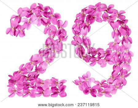 Arabic Numeral 29, Twenty Nine, From Flowers Of Viola, Isolated On White Background