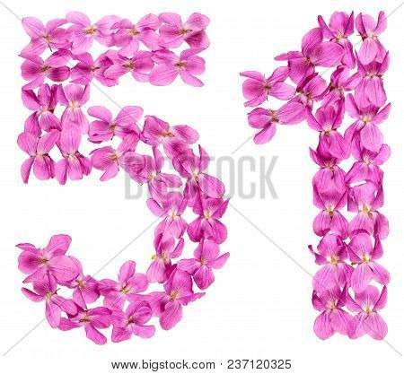Arabic Numeral 51, Fifty One, From Flowers Of Viola, Isolated On White Background