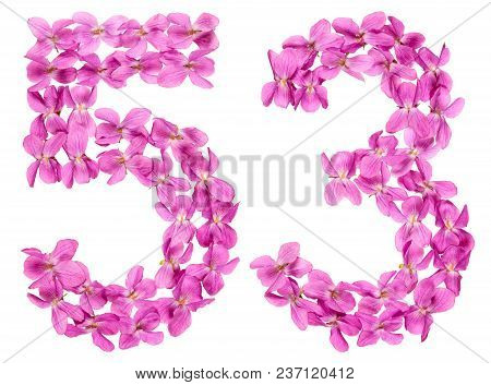 Arabic Numeral 53, Fifty Three, From Flowers Of Viola, Isolated On White Background