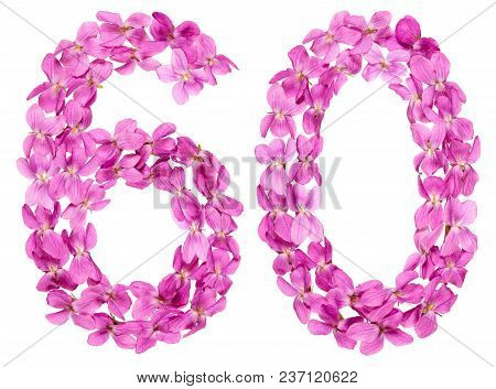 Arabic Numeral 60, Sixty, From Flowers Of Viola, Isolated On White Background