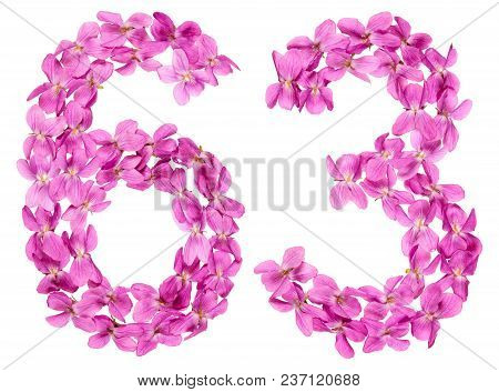 Arabic Numeral 63, Sixty Three, From Flowers Of Viola, Isolated On White Background