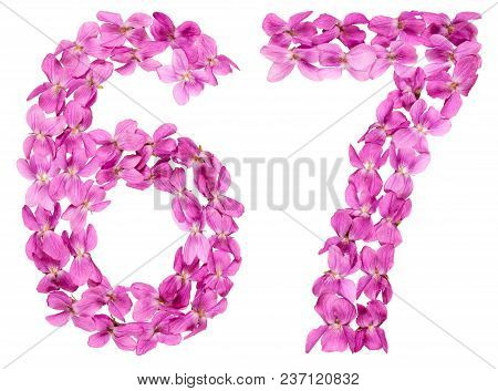 Arabic Numeral 67, Sixty Seven, From Flowers Of Viola, Isolated On White Background