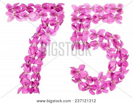Arabic Numeral 75, Seventy Five, From Flowers Of Viola, Isolated On White Background