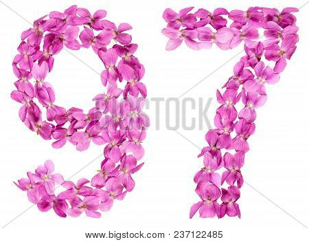 Arabic Numeral 97, Ninety Seven, From Flowers Of Viola, Isolated On White Background