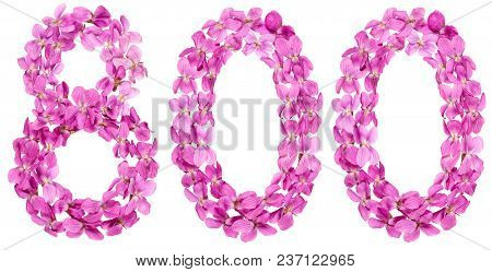 Arabic Numeral 800, Eight Hundred, From Flowers Of Viola, Isolated On White Background