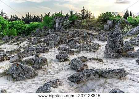 Magnificent Landscape Of Abstract Stones On A Hill At Sunset.