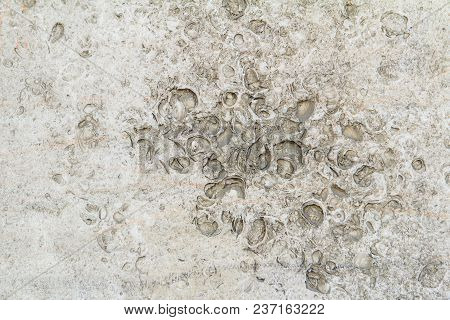 Yellow White Concrete Wall With Craters Background Limestone Brick