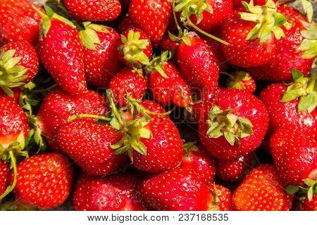 Background Of The Ripe Fresh Strawberry Fruits