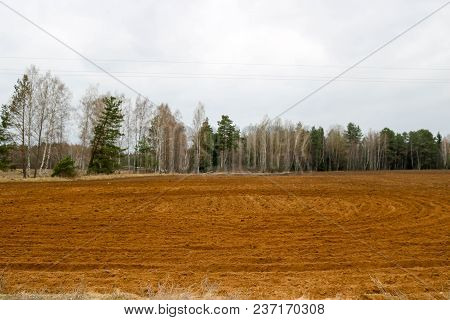 Landscape Field, Land For Plowing With Crops On The Background Of Forest And Sky.
