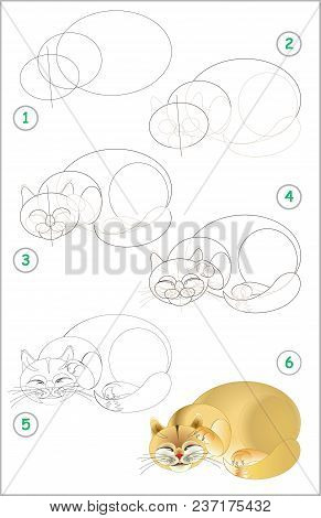 Page Shows How To Learn Step By Step To Draw A Sleeping Cat. Developing Children Skills For Drawing