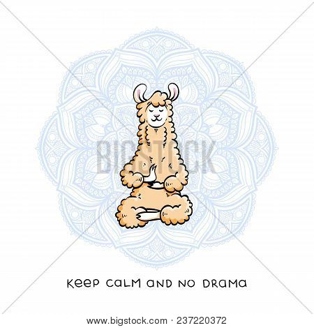 Cute Meditating Furry Llama. Vector Cartoon Illustration On A White Background With Motivational Let