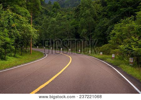 Empty Road In Wild Forest. Summer Outdoor Travel Landscape. Empty Highway With Green Roadside. Summe