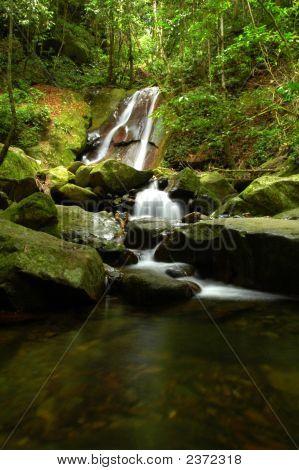 Wald Wasserfall (verkleinert)