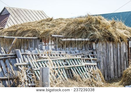 Old Rustic Frayed Fence Behind Which Is Hay