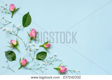 Top View Of Pink Roses And Green Leaves Over Blue Background. Abstract Floral Background. Copy Space