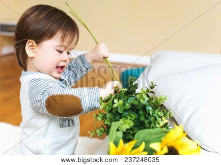 Happy Toddler Boy Playing With Flowers In His House