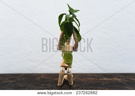 Wooden Toy In The Image Of A Man On A Light Background In The Hands With A Green Plant 1