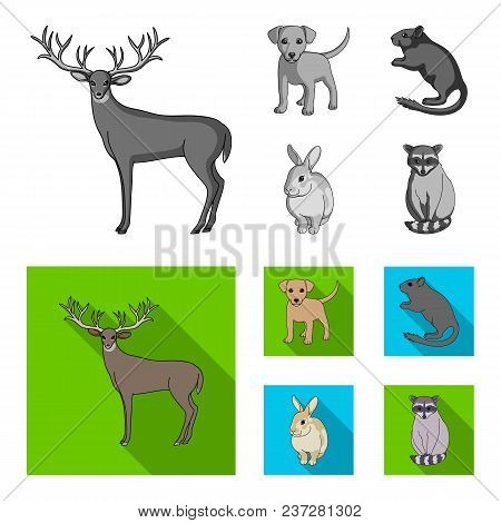 Puppy, Rodent, Rabbit And Other Animal Species.animals Set Collection Icons In Monochrome, Flat Styl