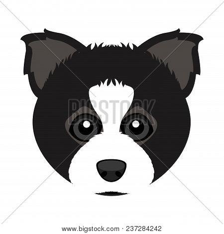 Cute Border Collie Dog Avatar. Vector Illustration Design