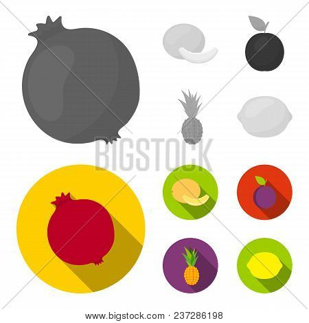 Melon, Plum, Pineapple, Lemon.fruits Set Collection Icons In Monochrome, Flat Style Vector Symbol St