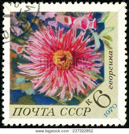 Ukraine - Circa 2018: A Postage Stamp Printed In Ussr Show Flower Dahlia. Series: Flowers. Circa 197