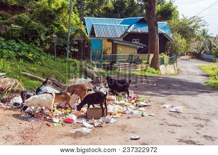 Dump On The Streets Of Port Blair. Dirty Streets Of Asian Cities. Environmental Problems In India. G