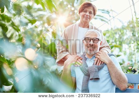 Cheerful and affectionate seniors in casualwear spending time in orangery or garden among green plants poster