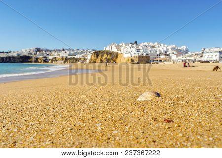 Shells On Wide, Sandy Beach In White City Of Albufeira, Algarve, Portugal