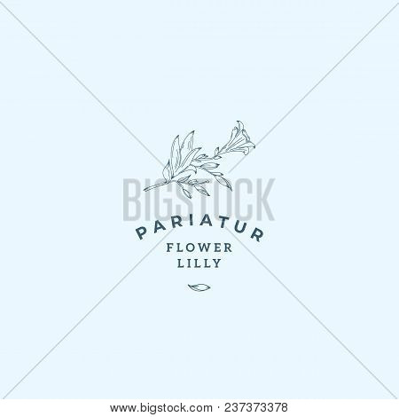 Lilly Flower Abstract Vector Sign, Symbol Or Logo Template. Hand Drawn Retro Lilly Illustration With