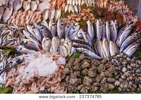 Closeup Of Assorted Seafood And Fish At Fish Market In Istanbul, Turkey, Selective Focus. Food Backg