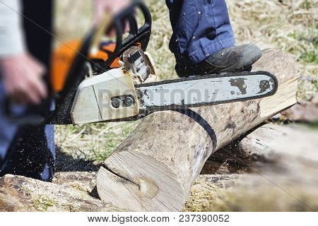 A Man With A Chainsaw Cutting Wood. The Concept Of Protection Of Nature. Firewood