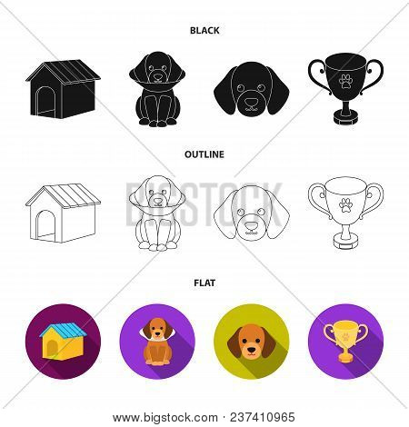Dog House, Protective Collar, Dog Muzzle, Cup. Dog Set Collection Icons In Black, Flat, Outline Styl