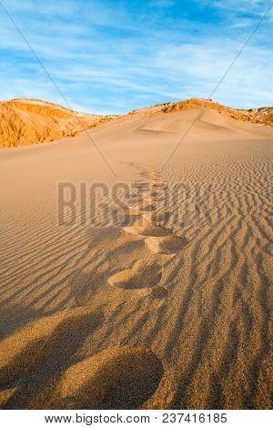 Footprint On A Sand Dune,