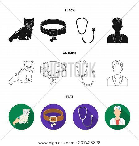 Collar, Bone, Cat, Haircut .vet Clinic Set Collection Icons In Black, Flat, Outline Style Vector Sym