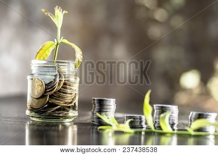 A Glass Jar Full Of Coins And Plant Growing Through It With Some Coins And Plant Leaves.  Concept Of