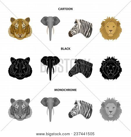 Tiger, Lion, Elephant, Zebra, Realistic Animals Set Collection Icons In Cartoon, Black, Monochrome S