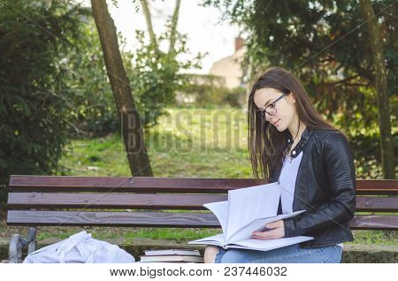Young Beautiful School Or College Girl With Eyeglasses Sitting On The Bench In The Park Reading The